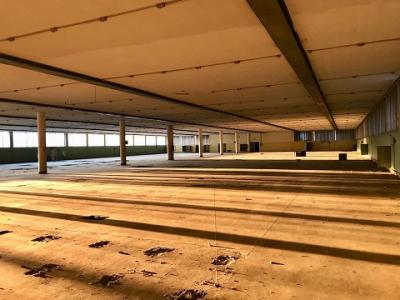 Annunci Cogefim immobile industriale vendita provincia di Varese