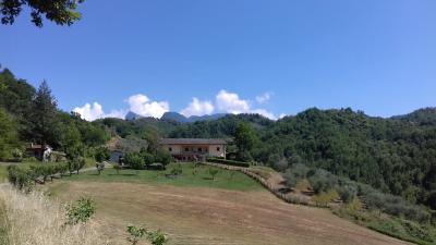 Annunci Cogefim azienda agricola in vendita a Fivizzano